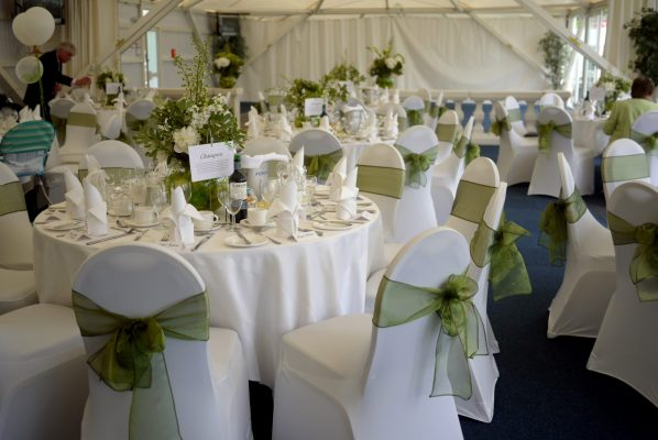 whitre and green reception
